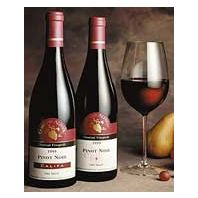 Domaine Alfred Edna Valley Chamisal Vineyards Pinot Noir 1999