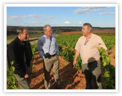 Panel Members Touring Bodega Vinae Mureri in Spain