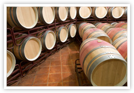 wine barrels in Rioja Spain